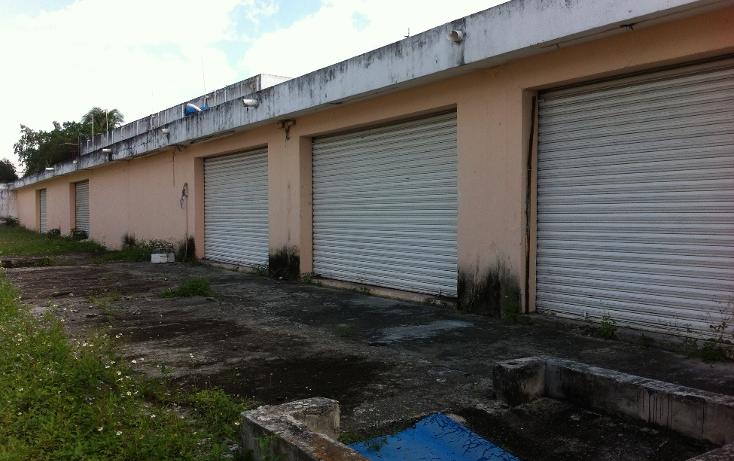Foto de local en renta en  , cozumel centro, cozumel, quintana roo, 1106193 No. 05