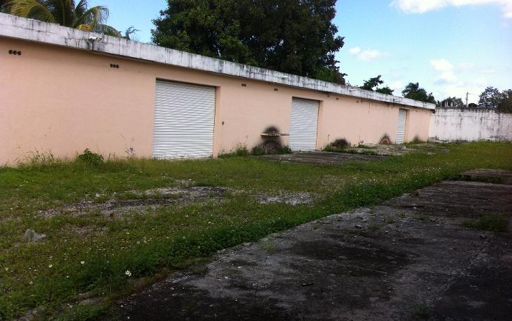 Foto de local en renta en  , cozumel centro, cozumel, quintana roo, 1106193 No. 06