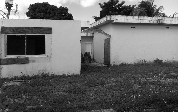 Foto de local en renta en  , cozumel centro, cozumel, quintana roo, 1106193 No. 07