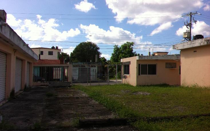 Foto de local en renta en  , cozumel centro, cozumel, quintana roo, 1106193 No. 09