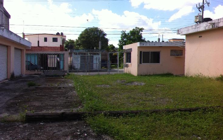 Foto de local en renta en  , cozumel centro, cozumel, quintana roo, 1106193 No. 10