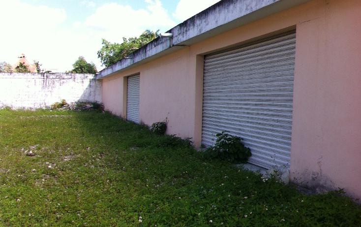 Foto de local en renta en  , cozumel centro, cozumel, quintana roo, 1106193 No. 12