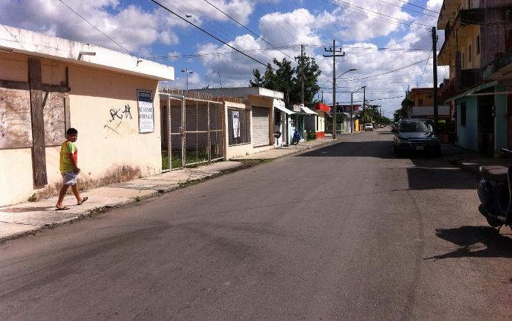 Foto de local en renta en  , cozumel centro, cozumel, quintana roo, 1106193 No. 13