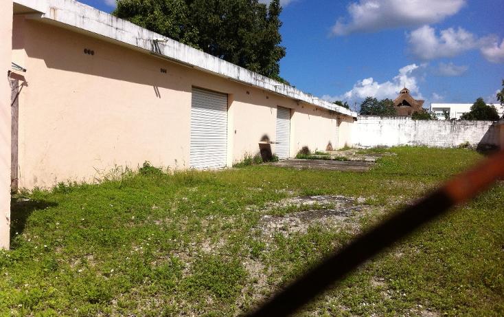 Foto de local en renta en  , cozumel centro, cozumel, quintana roo, 1106193 No. 15