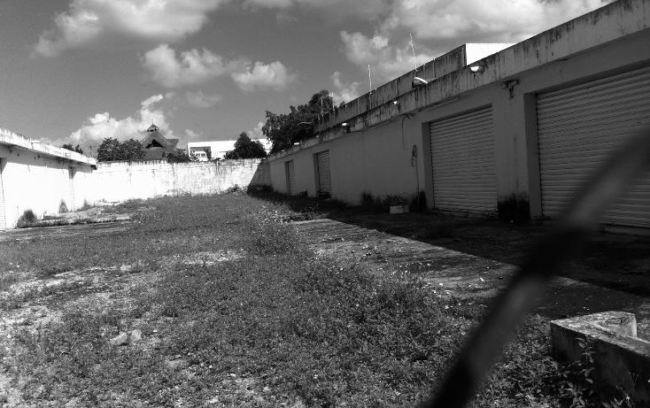 Foto de local en renta en  , cozumel centro, cozumel, quintana roo, 1106193 No. 16