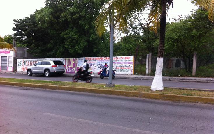 Foto de terreno comercial en venta en  , cozumel centro, cozumel, quintana roo, 1137193 No. 03