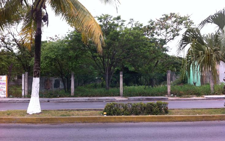 Foto de terreno comercial en renta en  , cozumel centro, cozumel, quintana roo, 1137195 No. 01