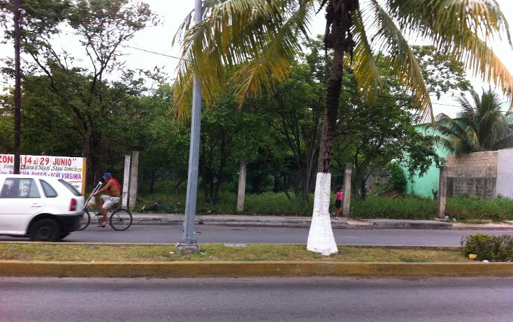 Foto de terreno comercial en renta en  , cozumel centro, cozumel, quintana roo, 1137195 No. 04