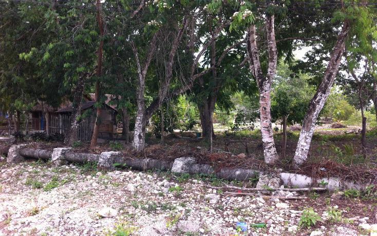 Foto de terreno habitacional en venta en  , cozumel centro, cozumel, quintana roo, 1301765 No. 01