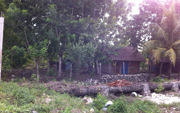 Foto de terreno habitacional en venta en  , cozumel centro, cozumel, quintana roo, 1301765 No. 03