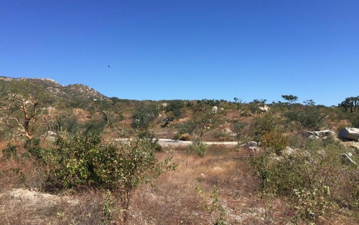 Foto de terreno habitacional en venta en  , el tezal, los cabos, baja california sur, 1960449 No. 10