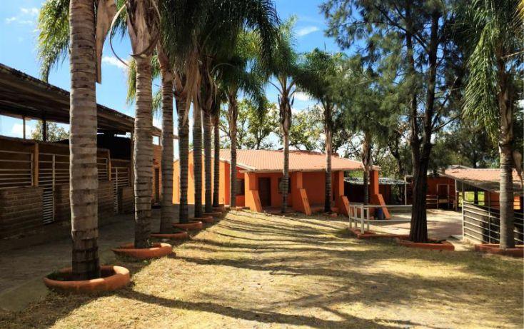 Foto de rancho en venta en crucero de huatla 47, huaxtla, el arenal, jalisco, 1902452 no 18