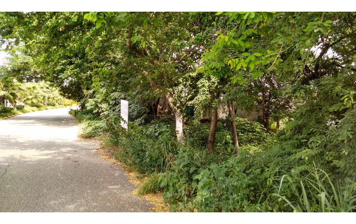 Foto de terreno comercial en venta en  , cruz de huanacaxtle, bahía de banderas, nayarit, 1501589 No. 04