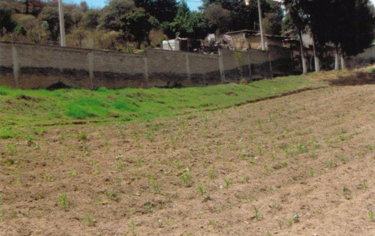 Foto de terreno habitacional en venta en cruz de mayo, cerro de cruz, tlalmanalco, estado de méxico, 1710970 no 01