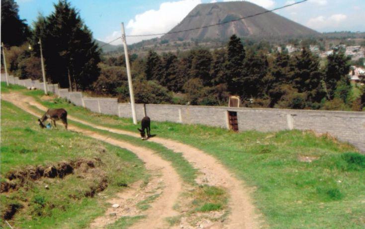 Foto de terreno habitacional en venta en cruz de mayo, cerro de cruz, tlalmanalco, estado de méxico, 1710970 no 02