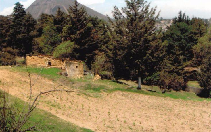 Foto de terreno habitacional en venta en cruz de mayo, cerro de cruz, tlalmanalco, estado de méxico, 1710970 no 12