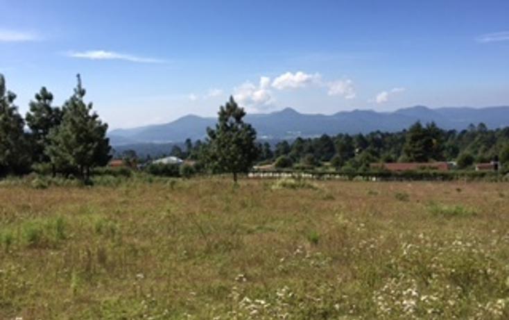 Foto de terreno habitacional en venta en  , cuadrilla de dolores, valle de bravo, méxico, 1509933 No. 03
