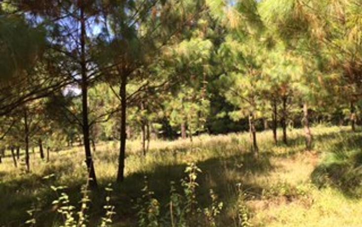 Foto de terreno habitacional en venta en  , cuadrilla de dolores, valle de bravo, méxico, 1509933 No. 04