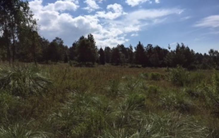 Foto de terreno habitacional en venta en  , cuadrilla de dolores, valle de bravo, méxico, 1509933 No. 05