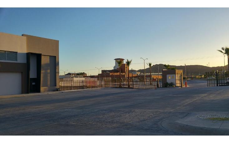 Foto de nave industrial en renta en  , cuartel xx caf? combate, hermosillo, sonora, 1853514 No. 05