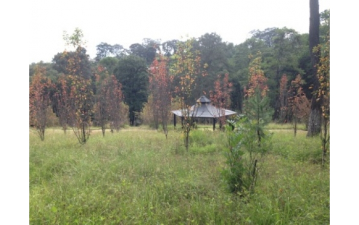 Foto de terreno habitacional en venta en, cuarto barrio cahuacán, nicolás romero, estado de méxico, 565285 no 06