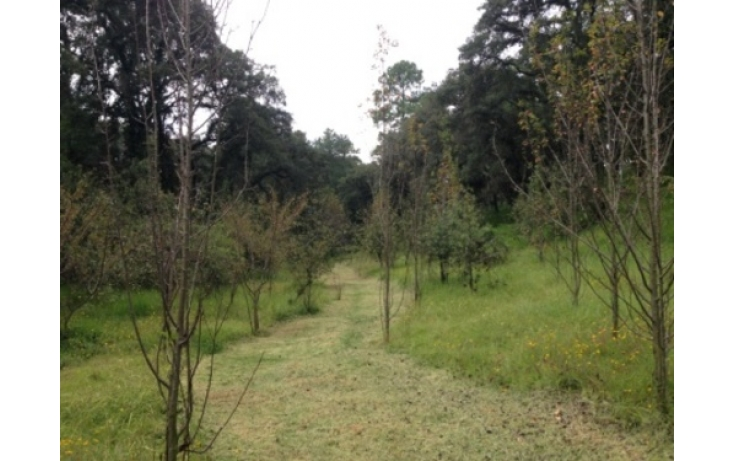 Foto de terreno habitacional en venta en, cuarto barrio cahuacán, nicolás romero, estado de méxico, 565285 no 10