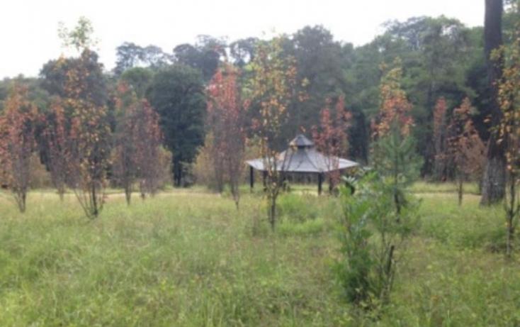 Foto de terreno habitacional en venta en, cuarto barrio cahuacán, nicolás romero, estado de méxico, 843011 no 06