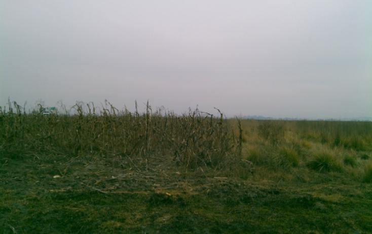 Foto de terreno habitacional en venta en cuatro caminos, la concepción coatipac la conchita, calimaya, estado de méxico, 784671 no 02