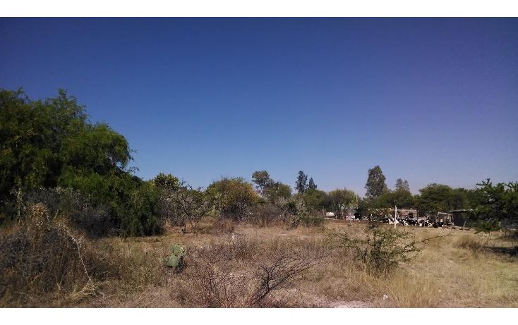 Foto de terreno habitacional en venta en  , cuauhtémoc, aguascalientes, aguascalientes, 1767432 No. 04