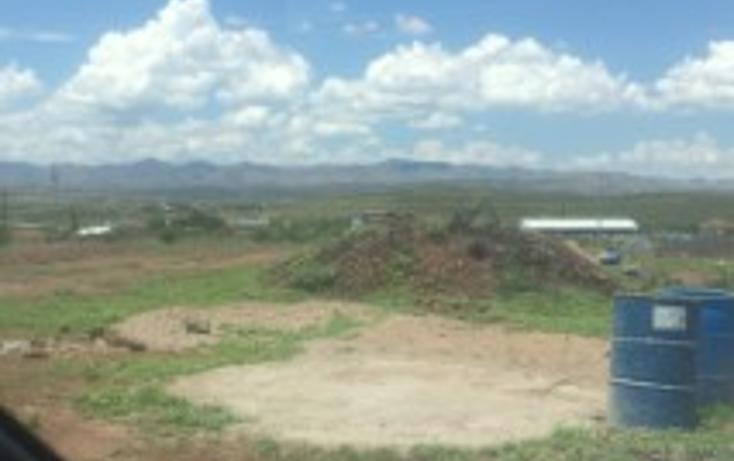 Foto de terreno comercial en renta en  , cuauht?moc, chihuahua, chihuahua, 1475855 No. 03