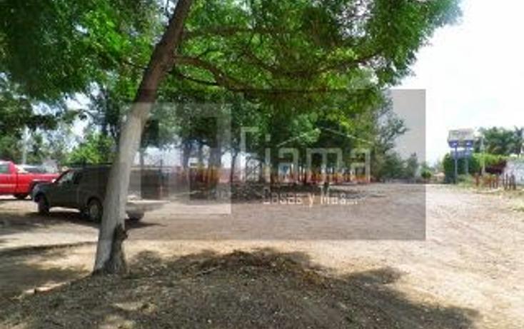 Foto de terreno comercial en venta en  , cuauhtémoc, tepic, nayarit, 1311359 No. 06