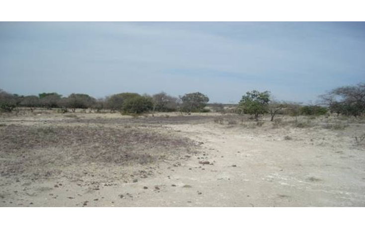 Foto de terreno habitacional en venta en  , cuautinchan, cuautinchán, puebla, 1291359 No. 01