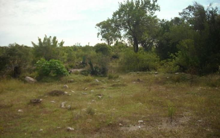 Foto de terreno comercial en venta en  , cuautinchan, cuautinchán, puebla, 894225 No. 02