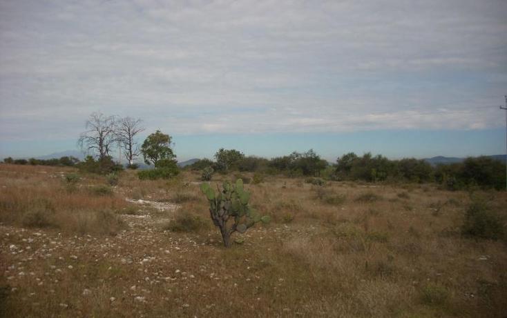Foto de terreno comercial en venta en  , cuautinchan, cuautinchán, puebla, 894225 No. 04