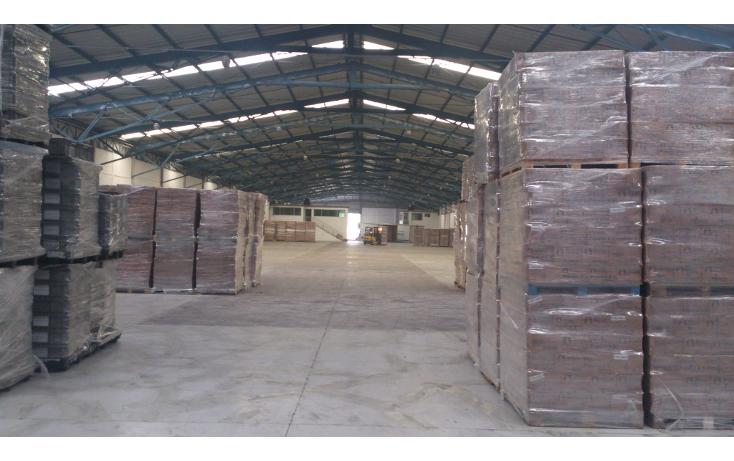 Foto de nave industrial en renta en  , cuautlancingo corredor empresarial, cuautlancingo, puebla, 1271631 No. 04