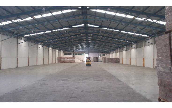 Foto de nave industrial en renta en  , cuautlancingo corredor empresarial, cuautlancingo, puebla, 1271631 No. 05