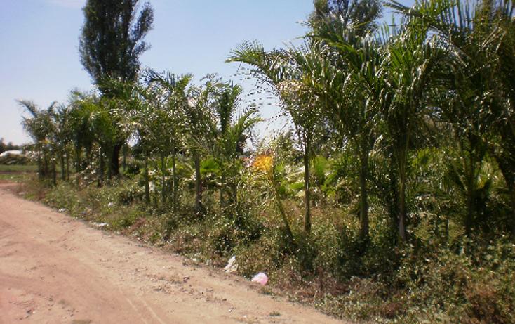 Foto de terreno comercial en venta en  , cuautlixco, cuautla, morelos, 1080363 No. 03