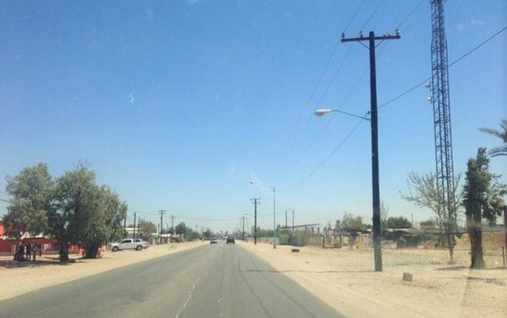 Foto de terreno habitacional en venta en  , cucapah progreso, mexicali, baja california, 1172381 No. 07