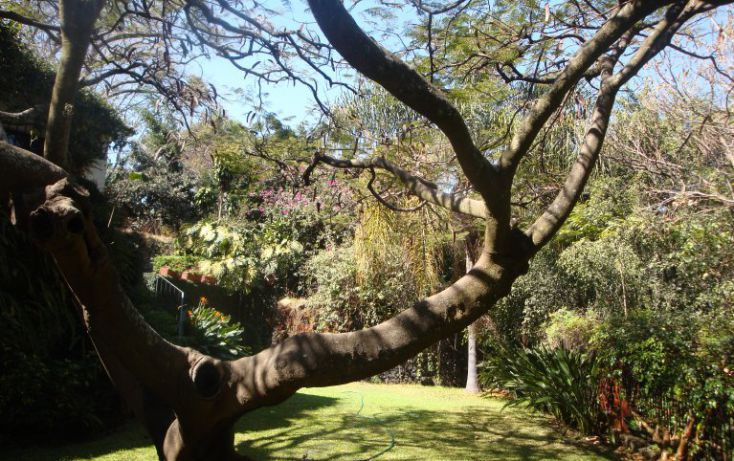Foto de casa en venta en, cuernavaca centro, cuernavaca, morelos, 1059271 no 23