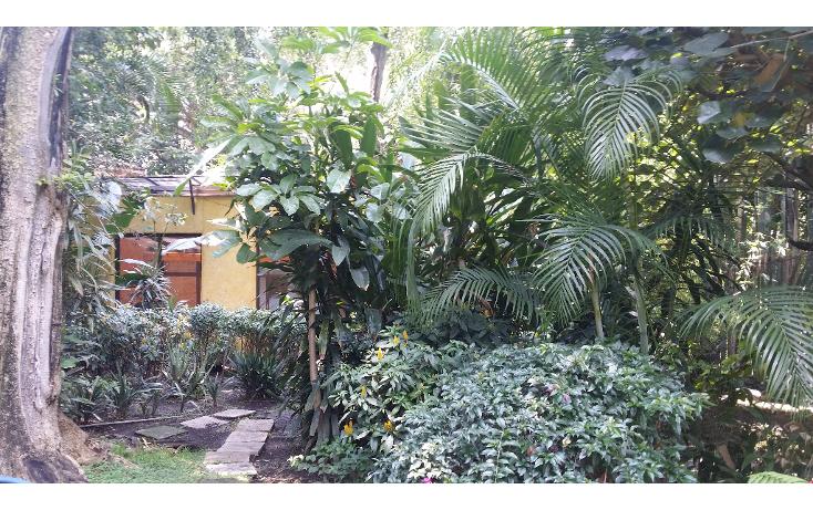 Foto de casa en venta en  , cuernavaca centro, cuernavaca, morelos, 1137491 No. 14