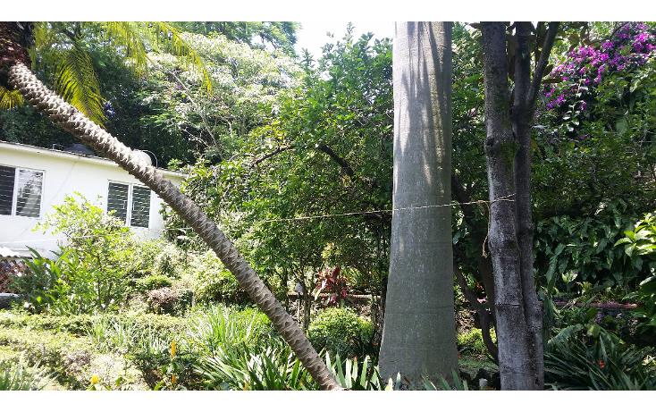 Foto de casa en venta en  , cuernavaca centro, cuernavaca, morelos, 1137491 No. 46