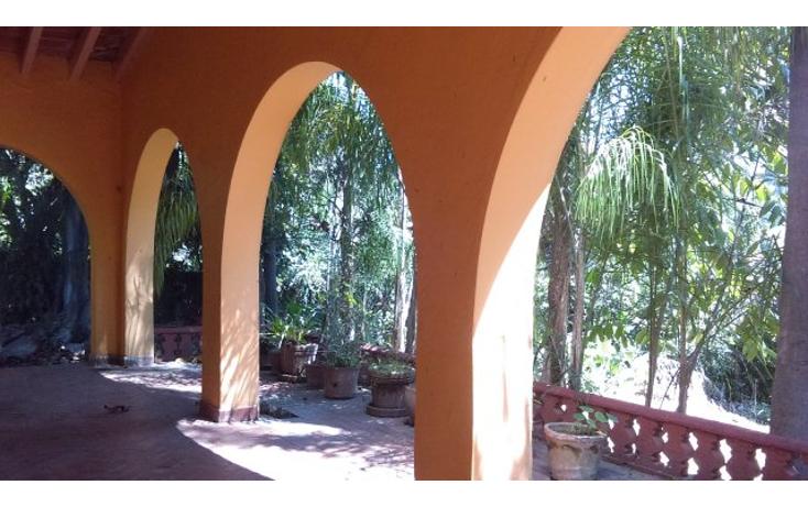 Foto de terreno habitacional en venta en  , cuernavaca centro, cuernavaca, morelos, 1389541 No. 09