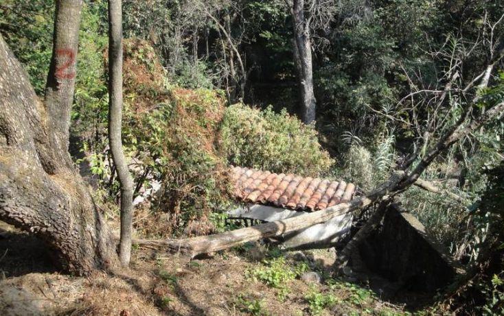 Foto de terreno comercial en venta en, cuernavaca centro, cuernavaca, morelos, 1747398 no 06