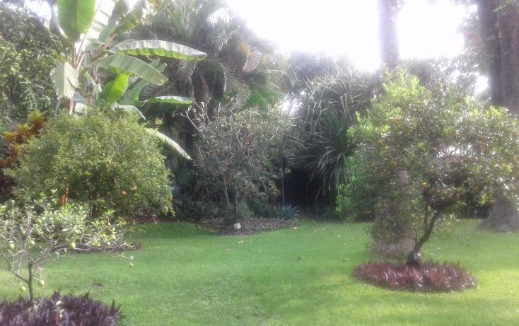 Foto de departamento en renta en, cuernavaca centro, cuernavaca, morelos, 1759149 no 02