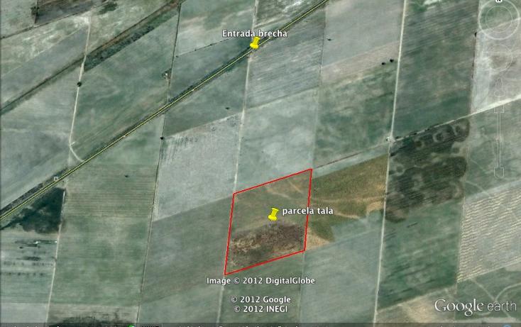 Foto de terreno comercial en venta en  , cuisillos, tala, jalisco, 1873902 No. 02