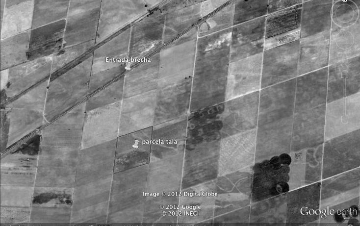 Foto de terreno comercial en venta en  , cuisillos, tala, jalisco, 1873902 No. 03