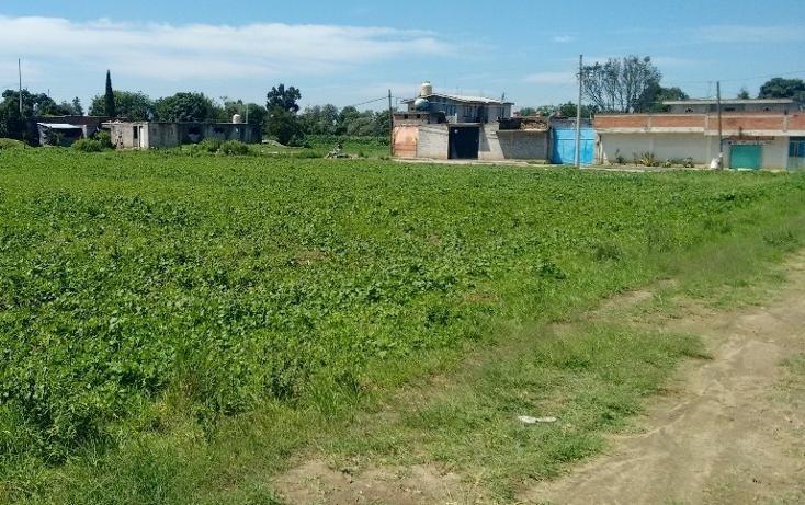 Foto de terreno habitacional en venta en  , culhuaca, santa isabel xiloxoxtla, tlaxcala, 1986843 No. 01