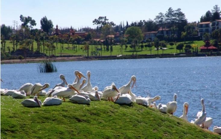 Foto de terreno habitacional en venta en  , cumbres del lago, quer?taro, quer?taro, 1248963 No. 04