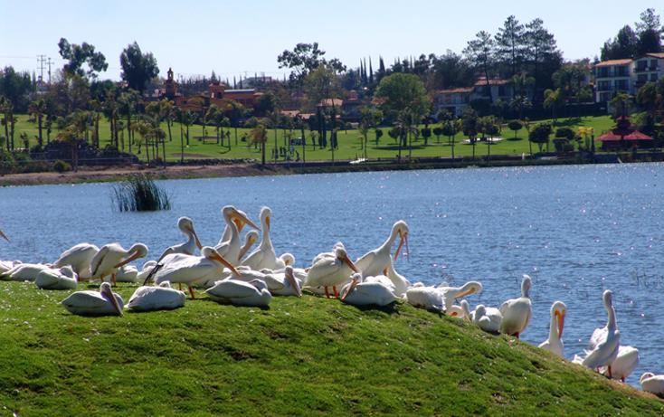 Foto de terreno habitacional en venta en  , cumbres del lago, querétaro, querétaro, 1430953 No. 17