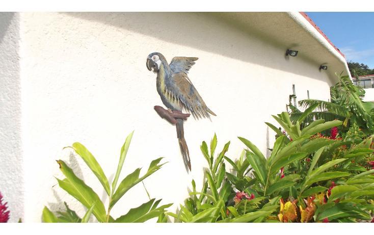 Foto de casa en venta en  , cumbres llano largo, acapulco de juárez, guerrero, 1292329 No. 22